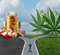 medical cannabis to treat addiction